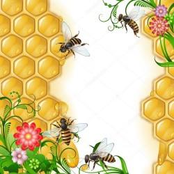 Приглашаем на курс апитоксинотерапии (пчелоужаления)