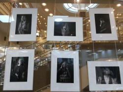 Необычная фотовыставка на 2-м этаже ТЦ